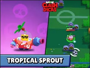 Tropical Sprout
