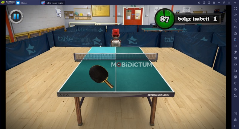 Table Tennis Touch Antrenman