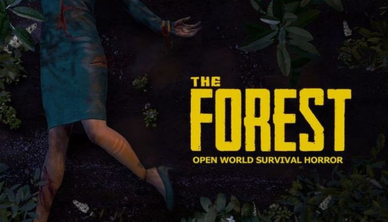 The Forest indir