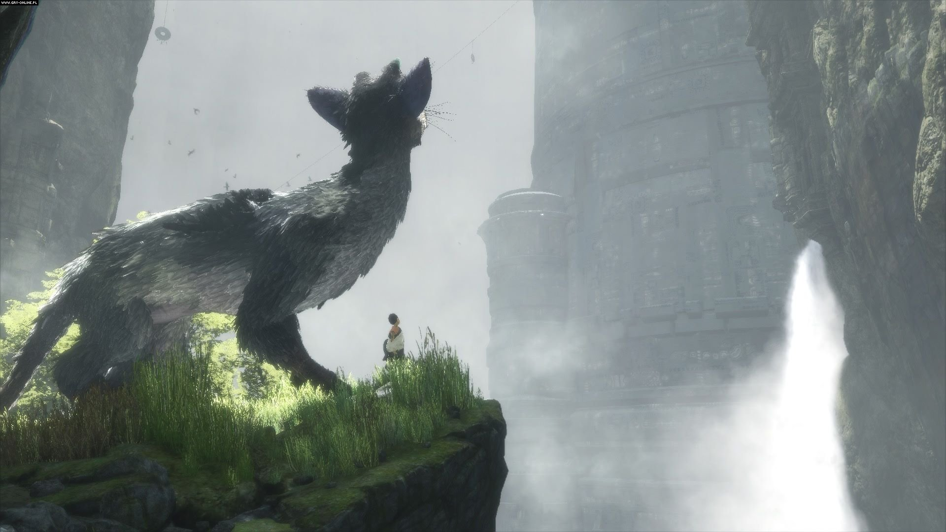 The Last Guardian, Trico.