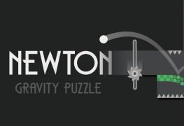 Newton-Gravity-Puzzle