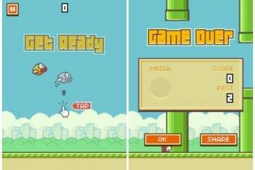 flappy bird ne kadar kazandırdı