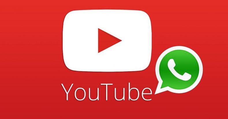Youtube WhatsApp