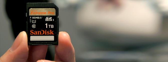 SanDisk 1 TB MicroSD Kart
